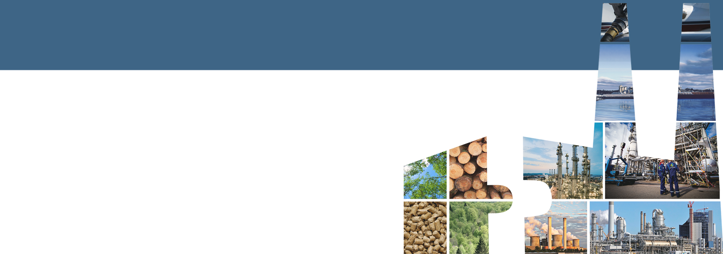 Bioenergy Retrofits for Europe's Industry